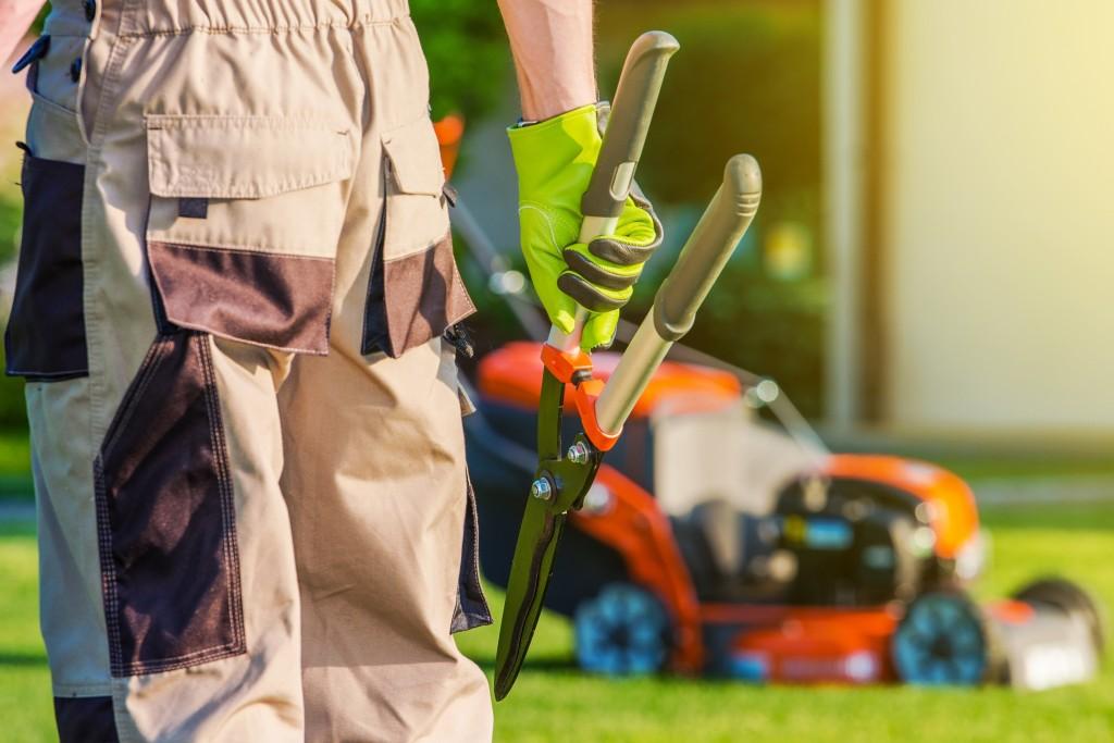 Professional landscaper holding garden tool