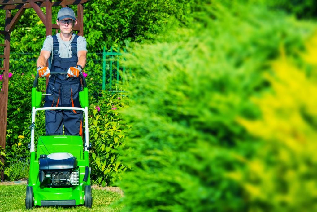 Professional grass mower
